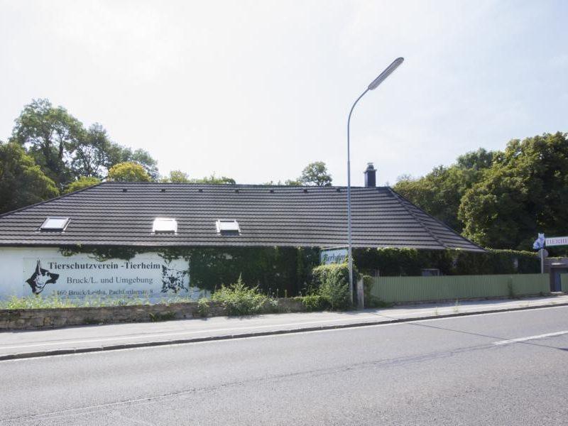 Referenz ATG Tierheim